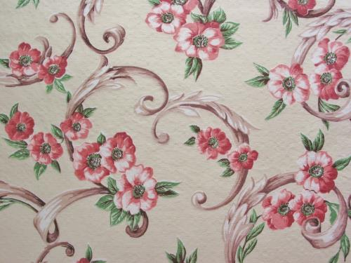 Vintage Pink Roses or Dogwood Flowers on Cream